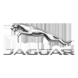 Jaguar title=